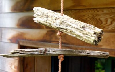 Une vie en équilibre – L' équilibre : écosystème fragile